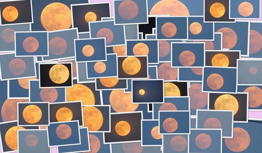 Hunters_Moon_collage_Kausor_Khan