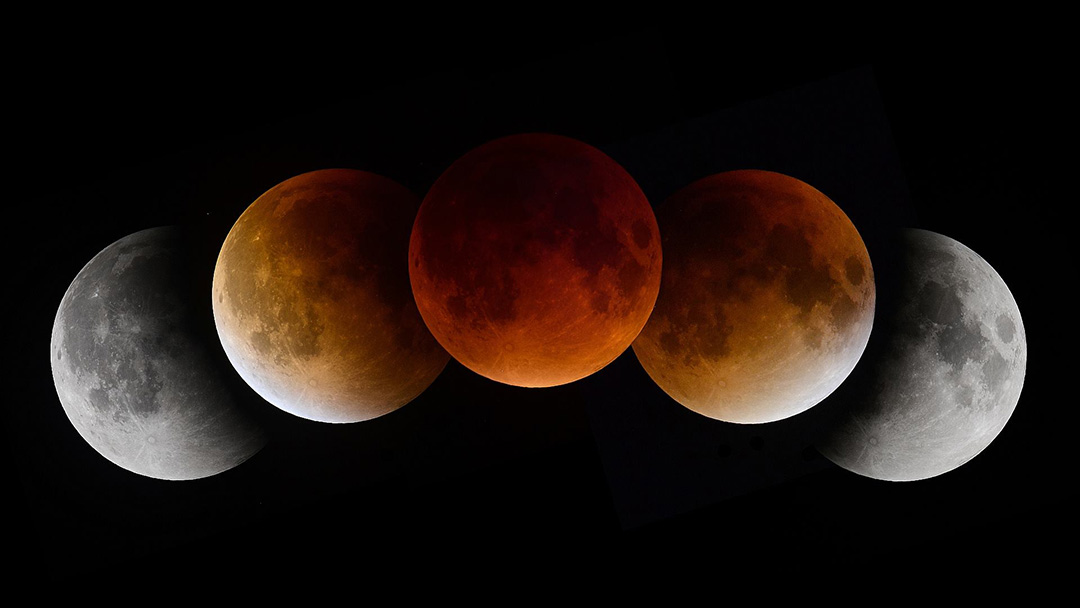 Lunar Eclipse sequence from 9/27/15. -  Elliot Severn
